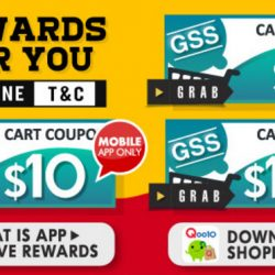 Qoo10: Great Singapore Sales with $3, $10 & $100 Cart Coupons Up for Grabs!