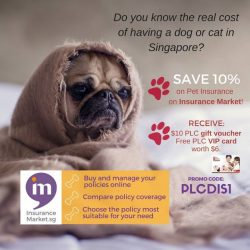 [Pet Lovers Centre Singapore] Take care of your pet and save 10% on Pet Insurance.
