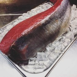 [Ola-Cocina del Mar] 5 facts about Yellowfin Tuna that you may not have known: 1.