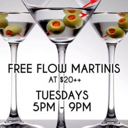 [The Beacon] Tuesday Martini Free Flow for $20++ and 1for1 All Draught Beers and House Pours during Happy Hour
