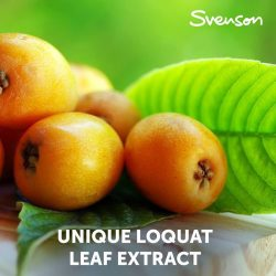 [Svenson] Loquat Leaf Extract - The key active ingredient in our Hair Densifier Treatment has a big role in invigorating the hair