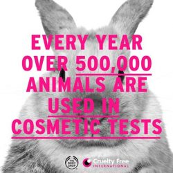[The Body Shop Singapore] This year alone, approximately half a million animals will be used in tests for cosmetic products and ingredients.