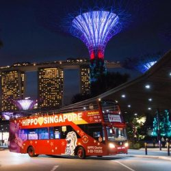 [Orchard Gateway] Exclusive GSS promotions from the Singapore Visitor Centre!