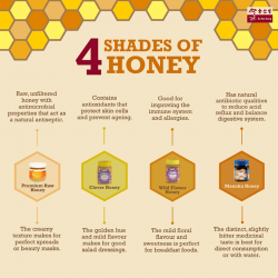 [Eu Yan Sang] Honey is full of nutritional and medicinal properties, which makes it an excellent natural remedy for many ailments.