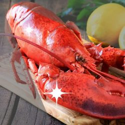 [Mookata Thai BBQ] The Boston Lobster is enjoying the limelight in our Mookata Seafood Fiesta promotion!