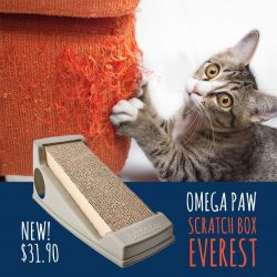 [Pet Lovers Centre Singapore] The Everest Scratch Box is a refillable, angled Scratch Box with Cat Toy.
