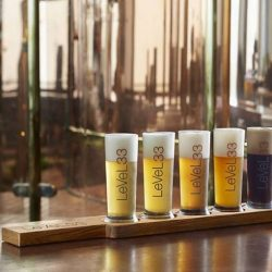 [LeVeL33] LeVeL33's Beer Tasting Paddle offers five 0.