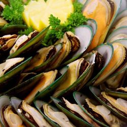 [SEASONAL SALAD BAR] Fresh mussels for dinner at our salad bar!