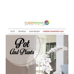 [Floweradvisor] Let's Plant Your Happier and Healthier Life