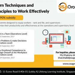 [SSA Consulting Group] Are you keen on maximising your skills as well as your time to be productive as possible?