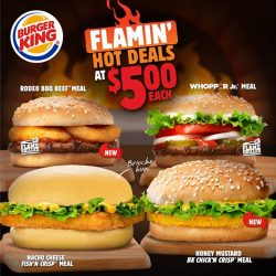 [Burger King Singapore] Tuck into a Flamin' Hot Deal for a Tuesday treat!