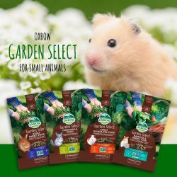 [Pet Lovers Centre Singapore] Garden Select combines select, wholesome, and enriching garden ingredients with a hand-selected blend of hays to create aromatic, enticing