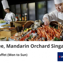 Triple Three @Mandarin Orchard: Enjoy 1-for-1 Buffet Lunch with UOB or DBS/POSB Cards!