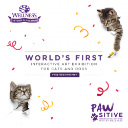 [Pet Lovers Centre Singapore] In celebration of Wellness's 10th Anniversary in Singapore, experience the WORLD'S FIRST Interactive Art Exhibition with your cats