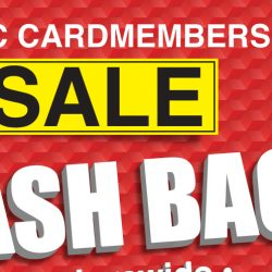 Best Denki: The OCBC Cardmember's SALE is Back Again with Additional Up to 9% OFF Storewide!