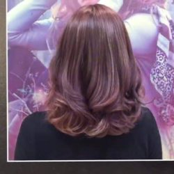 [Organic Hair Professional] INTRODUCTION OF NATURE'S COLOURNATURE'S COLOUR is a High Performance Professional Colouring System designed to achieve brilliant nuances,