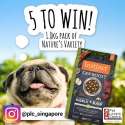 [Pet Lovers Centre Singapore] High-protein with freeze-dried raw meat, and grain-free, we believe your dog would LOVE this 1.