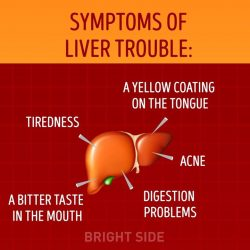 [Eu Yan Sang] If you have any of these symptoms, you may have liver trouble.