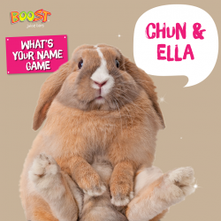 [Boost Juice Bars Singapore] Saturday is now even better for Chun and Ella!