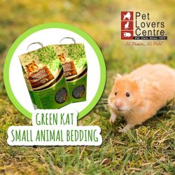 [Pet Lovers Centre Singapore] Looking for the perfect bedding for your Hamster?