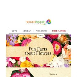 [Floweradvisor] FLOWERPEDIA: Fun Facts About Roses, Sunflowers And More. Discover Here!