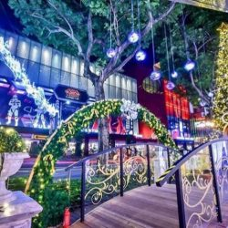 [Orchard Central] Do you like what you see?