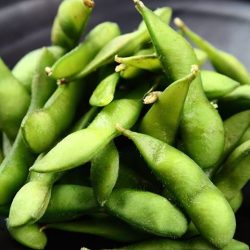 [Reddo Sushi] Edamame are young soy beans that are harvested before they have ripened or hardened.