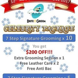 [Brite & Groom] COME NOW!