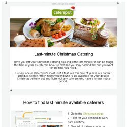 [CaterSpot] Last-minute Christmas Catering Options