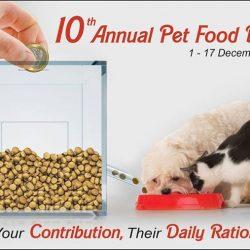 [Pet Lovers Centre Singapore] This Christmas season, let's embrace the Joy of Giving to bring love and happiness to our furry, four-legged