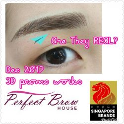 [Perfect Brow House] 3D Creative Eyebrow Embroidery Promo^^ Dec works ** Are They REAL?