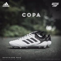 [WESTON CORP] The Brand New And Improved COPA 18.