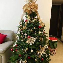 [Far East Flora] Stand to win $100 Far East Flora shopping vouchers by sharing a snapshot of your fancy Christmas Tree with us!
