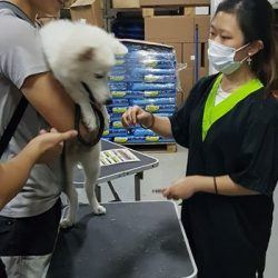[Pets' Station] Like Pets' Station and get Free Basic Grooming (Nail Clipping & Ear Cleaning)