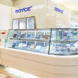 [Royce'] Chocolate is truly a remarkable remedy for all sickness and discomfort.