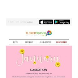 [Floweradvisor] FLOWERPEDIA: Find Out More About This Meaningful Flower, Carnation!