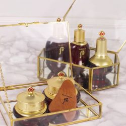 [The History of WHOO] Your skin deserves a facial treat.
