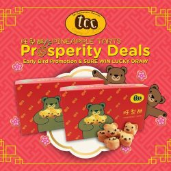 [Anchorpoint] TCC's Beary cute Prosperous Bear Pineapple Tarts are back!