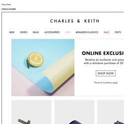 [Charles & Keith] ONLINE ONLY | Exclusive Coin Pouch Gift