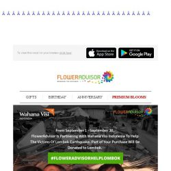 [Floweradvisor] Lend Your Helping Hand to Our Brothers and Sisters in Lombok. Find Out Here!