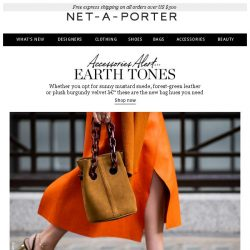 [NET-A-PORTER] Bags to fall for