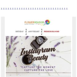 [Floweradvisor] Upscale your Instagram game with Instagram-Ready blooms!