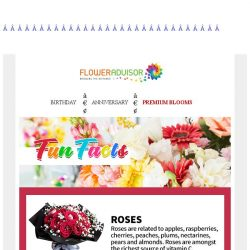 [Floweradvisor] FLOWERPEDIA: 3 fun facts about Roses, Sunflowers and Hydrangea. Find out here!
