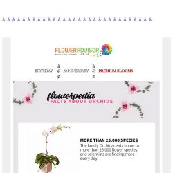 [Floweradvisor] FLOWERPEDIA: Facts about orchids you might not know. Check out!