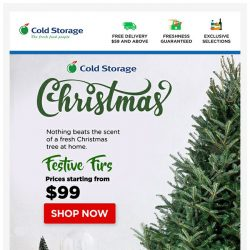 [Cold Storage] 🎄 Fresh Tree for the Perfect Christmas - Delivered to your Doorstep! 🎄