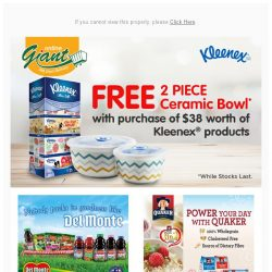 [Giant] YAY❗FREE 2 Ceramic Bowls JUST FOR YOU @gmail.com from Kleenex 🔔