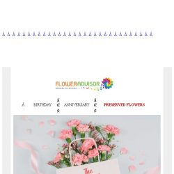 [Floweradvisor] Meanings & Symbolism Of Carnation Flowers, You Need To Know.